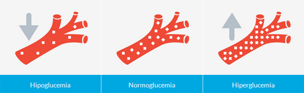 Hipoglucemia Normoglucemia Hiperglucemia