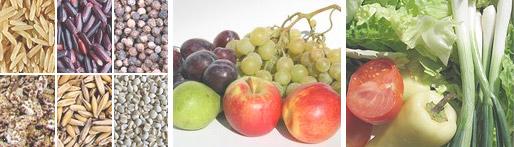 Frutas con que diabetes puede comer se