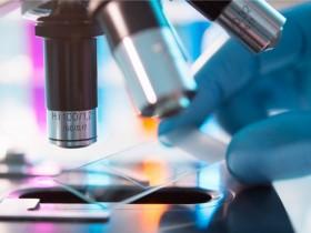 ¿Cuánto se tarda (y por qué) en desarrollar un medicamento?