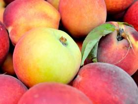 Frutas de verano y consumo recomendado