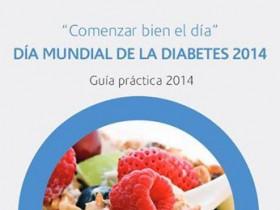 Guía Práctica Día Mundial de la Diabetes 2014